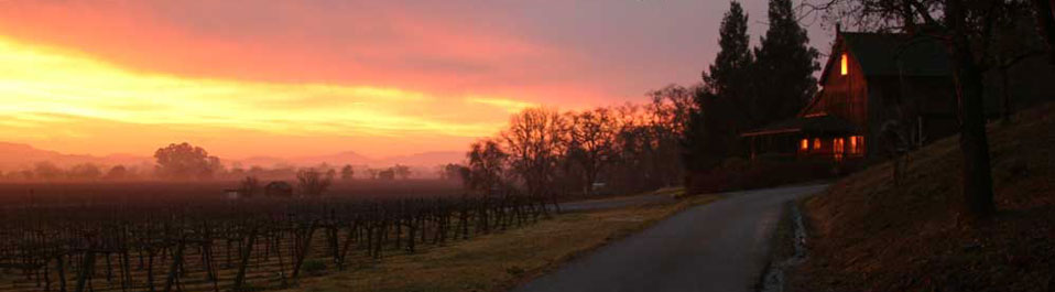 Mill Creek Vineyards and Winery Tasting Rom at Dawn